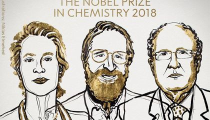 Three Evolutionary Scientists Share This Year's Nobel Prize in Chemistry