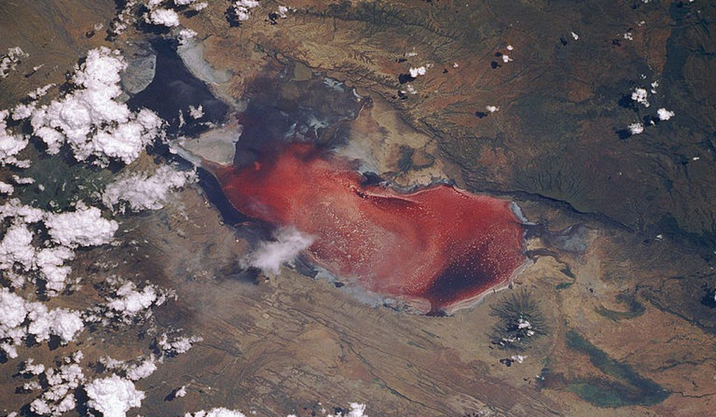 Lake Natron photographed from space.