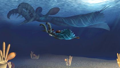 This Prehistoric Sea Creature Had Fanged, Killer Babies