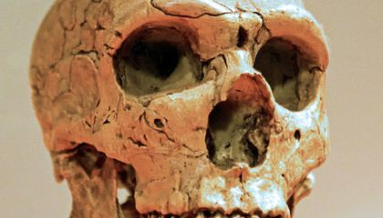 Were Neanderthals Victims of Their Own Success?