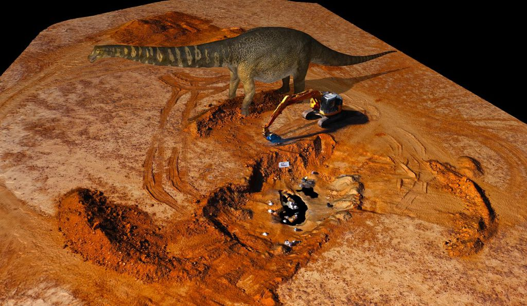 It is estimated that <i>Australotitan cooperensis</i>  weighed 70 tons, stood at two stories tall, and measured 25-30 meters (82-98 feet) in length, about the size of a basketball court.