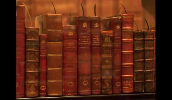 Preview thumbnail for video'The Books of Thomas Jefferson's Library