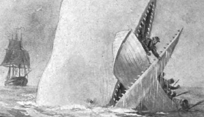 The True-Life Horror That Inspired Moby-Dick