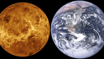 Early Venusian Oceans May Have Harbored Life