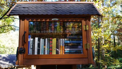 Build Your Own Library at the First-Ever Little Library Festival