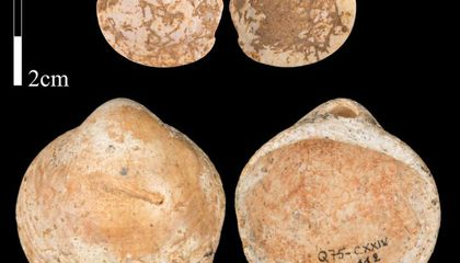 New Research Suggests Humans Invented String at Least 120,000 Years Ago