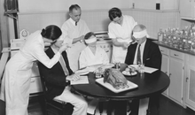The Government Taste Testers Who Reshaped America's Diet