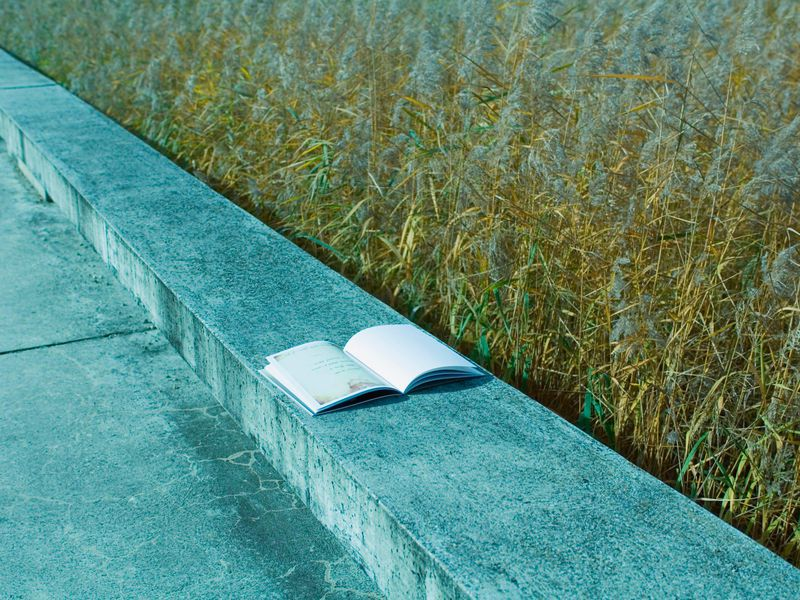 Discarded Book