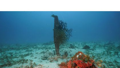 Three U.S. Planes Lost During World War II Found in Pacific Lagoon