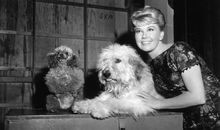 Doris Day's Biggest Hit Was a Song She Hated