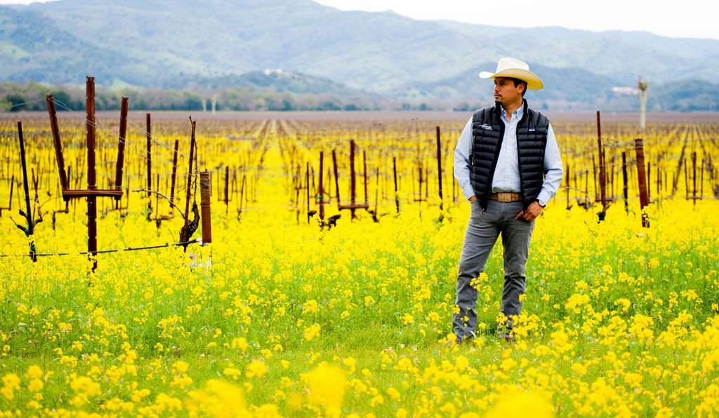 Alejandro Castillo Llamas acquired his deep knowledge of the wine business from the ground up.