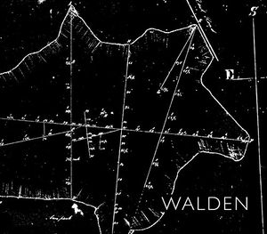 Preview thumbnail for 'Walden