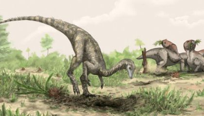 Scientists Discover Oldest Known Dinosaur