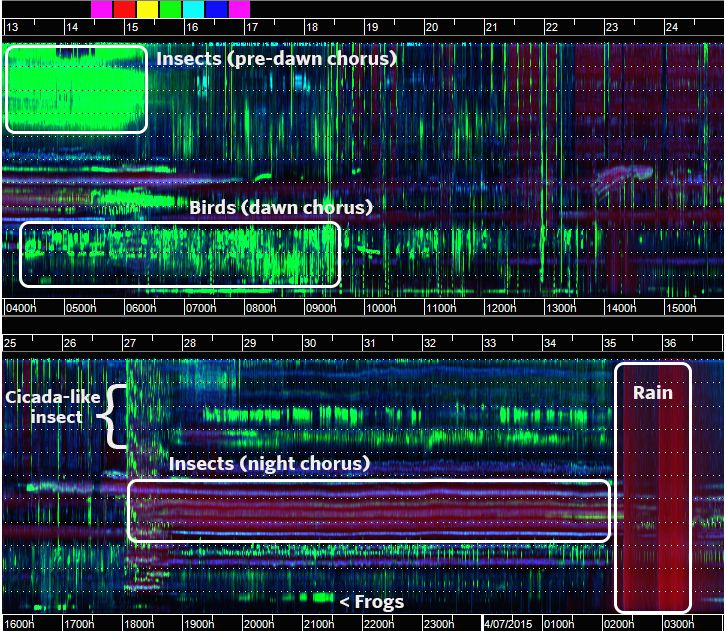 Annotated-Spectrogram.jpg