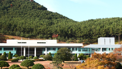 Why South Korea's National Archive Uprooted 12 Japanese Trees