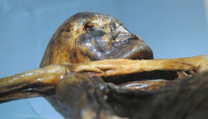 """The 61 Tattoos of Ötzi, the 5,300-Year-Old """"Iceman"""""""