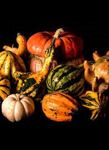 Caption: The Science Behind Decorative Gourd Season