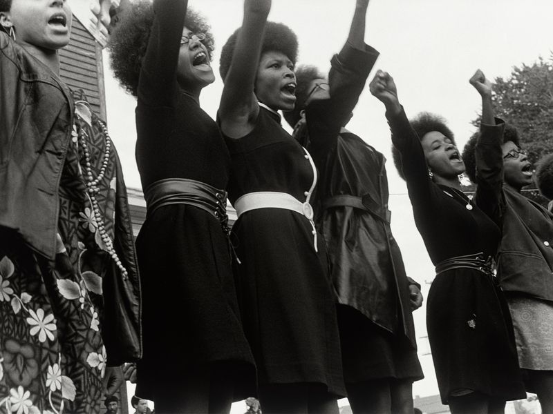 eed1a8eee The Rank and File Women of the Black Panther Party and Their ...