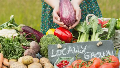 Your Guide to Shopping at the Farmers' Market and Keeping Your Purchases Fresh at Home