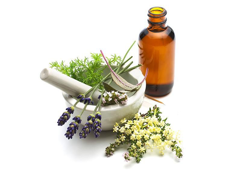 Part of Being a Domestic Goddess in 17th Century Europe Was Making Medicines