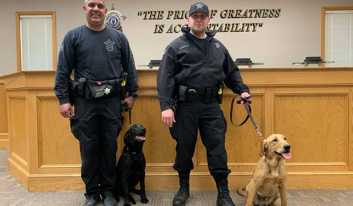 Massachusetts Is First State to Use Covid K9 Unit