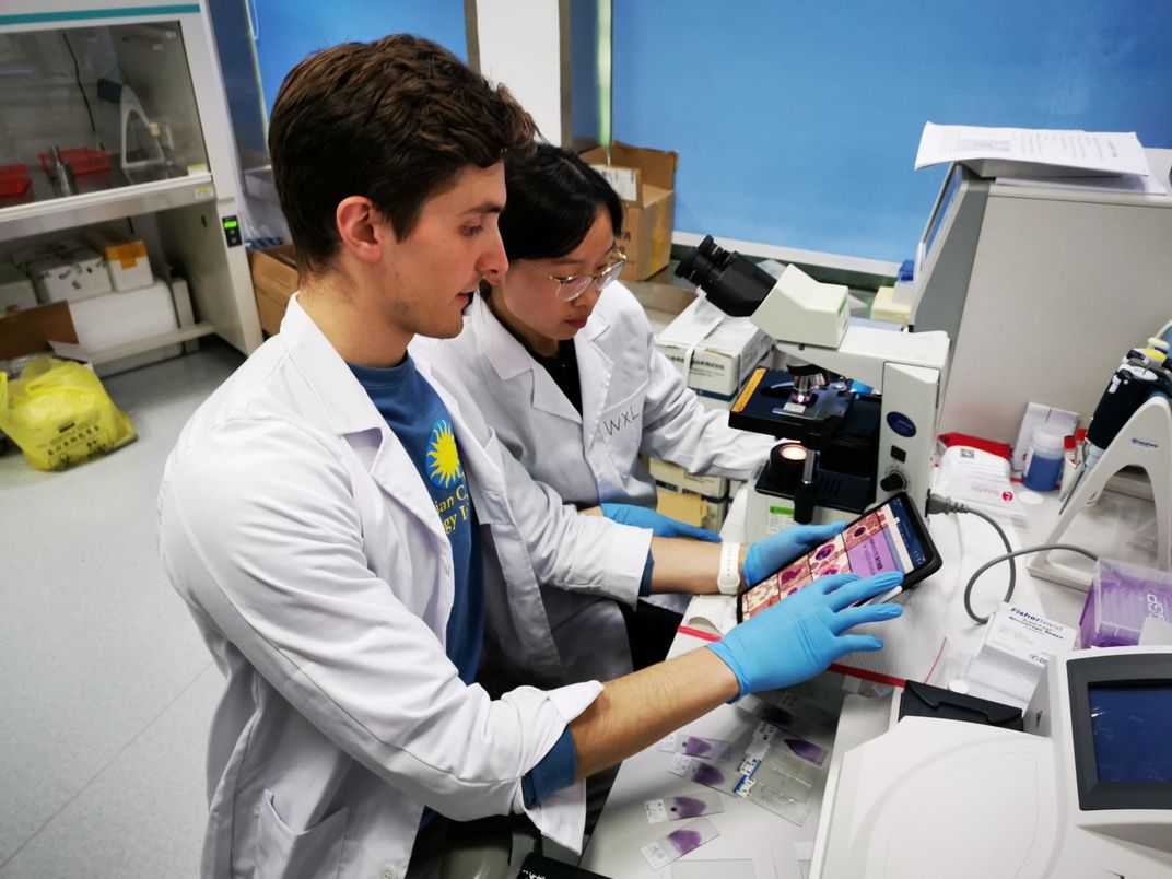 Global Health Program intern and veterinary student Zachary Dvornicky-Raymond provides training in blood cell analysis to veterinary staff at CPB. The two colleagues view a digital tablet with images of cells and look at a sample under a microscope.
