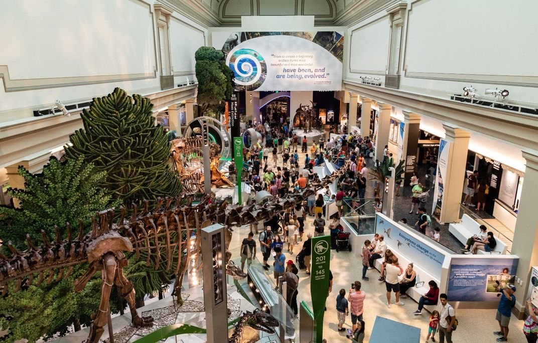 A view from above of the Smithsonian's new fossil hall filled with people.