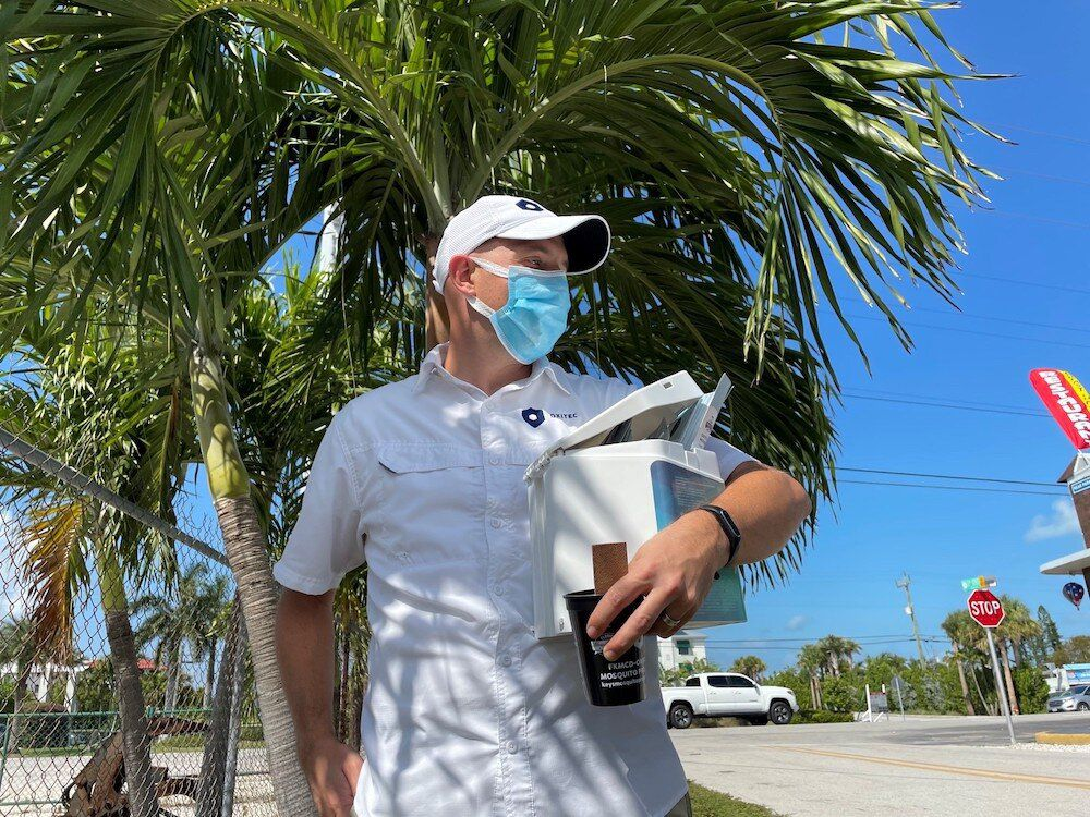 Genetically Modified Mosquitoes Take Flight to Fight Invasive Species in Florida