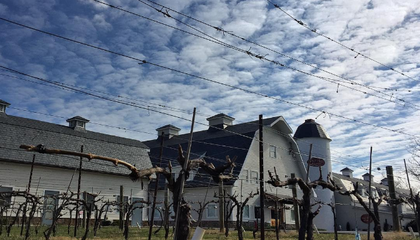 This Virginia Winery Once Housed One of WWII's Most Important Spy Stations