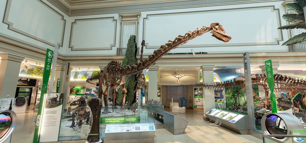 Caption: Smithsonian's New Fossil-Dino Hall Opens June 8