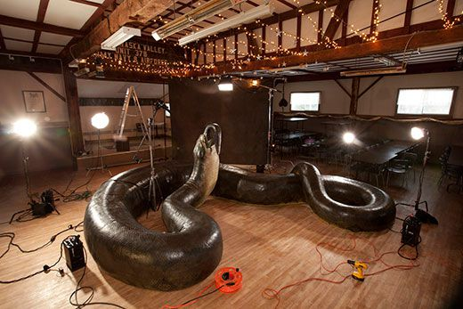How Titanoboa, the 40-Foot-Long Snake, Was Found | Science