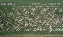 Crop mazes (not circles) celebrate an advanced (not alien) mode of transport.