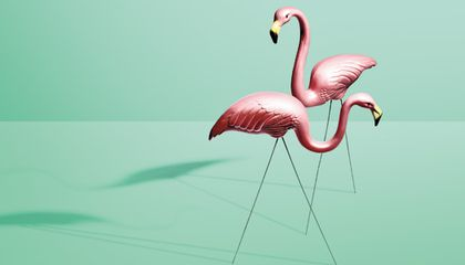 The Tacky History Of The Pink Flamingo Arts Culture