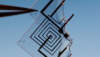 Scientists Invent Electronic Circuits That Dissolve in Water