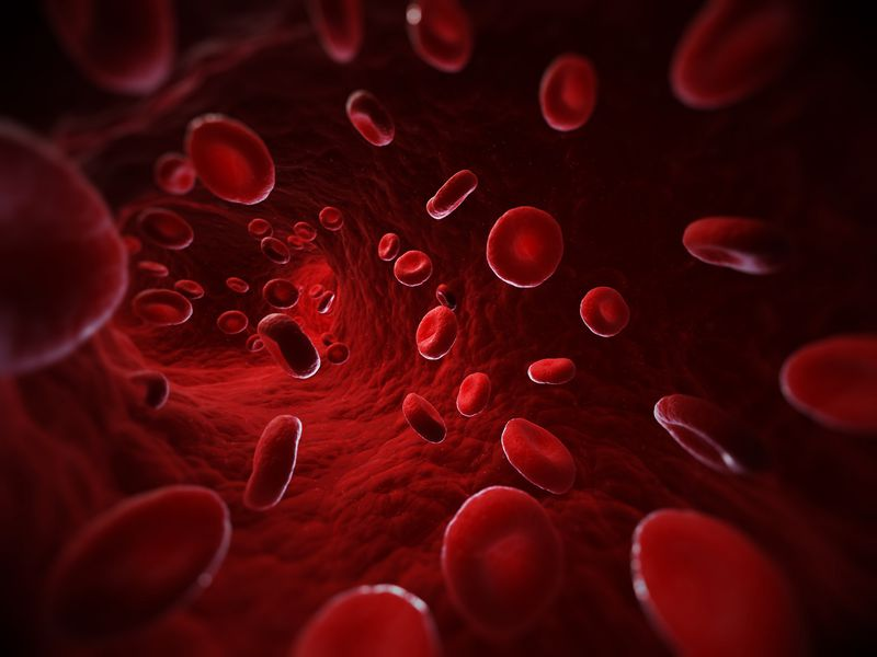 Computer illustration of red blood cells in a blood vessel
