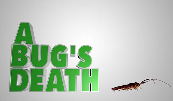 Preview thumbnail for video'Ask Smithsonian: Why Do Bugs Die on Their Backs?