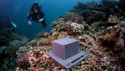 What's Working When It Comes to the Ocean?