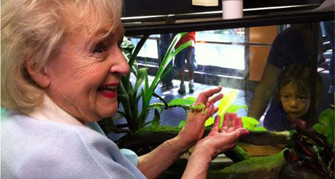 Actress Betty White holds a lemur leaf frog during her tour today at the National Zoo