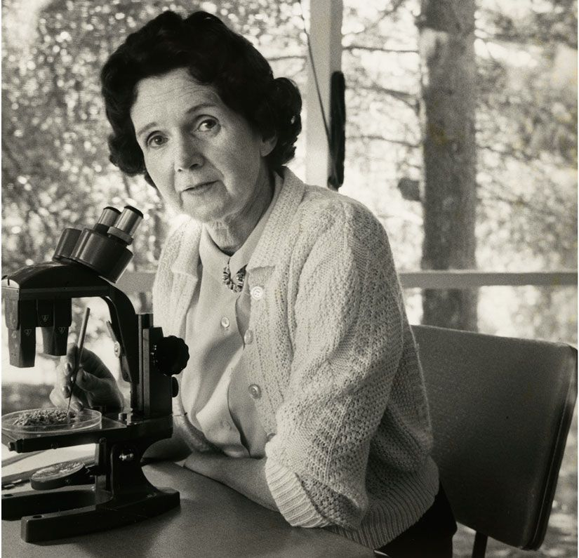 Rachel Carson Wrote Silent Spring (Partly) Because of the Author of Stuart  Little | Smart News | Smithsonian Magazine