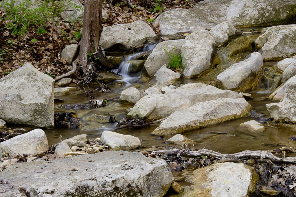 Small creek on Monte Sano Mountain after two rainy days in