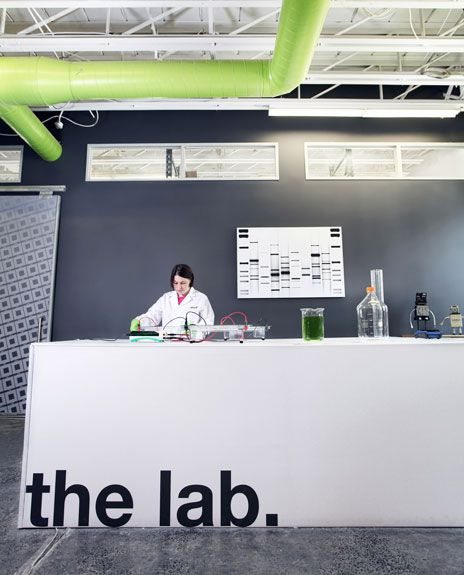 This summer, DNA 11 established the very first genetics lab devoted to art.