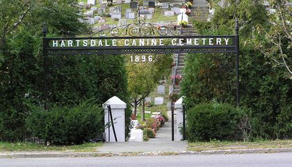 Commune With Pets of the Past at These Five Pet Cemeteries