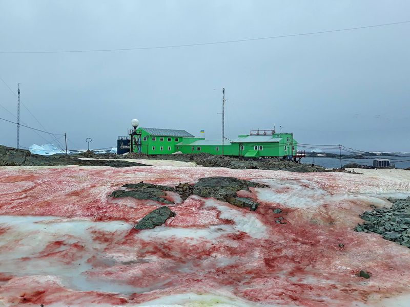 Red snow outside the Vernadsky Research Base