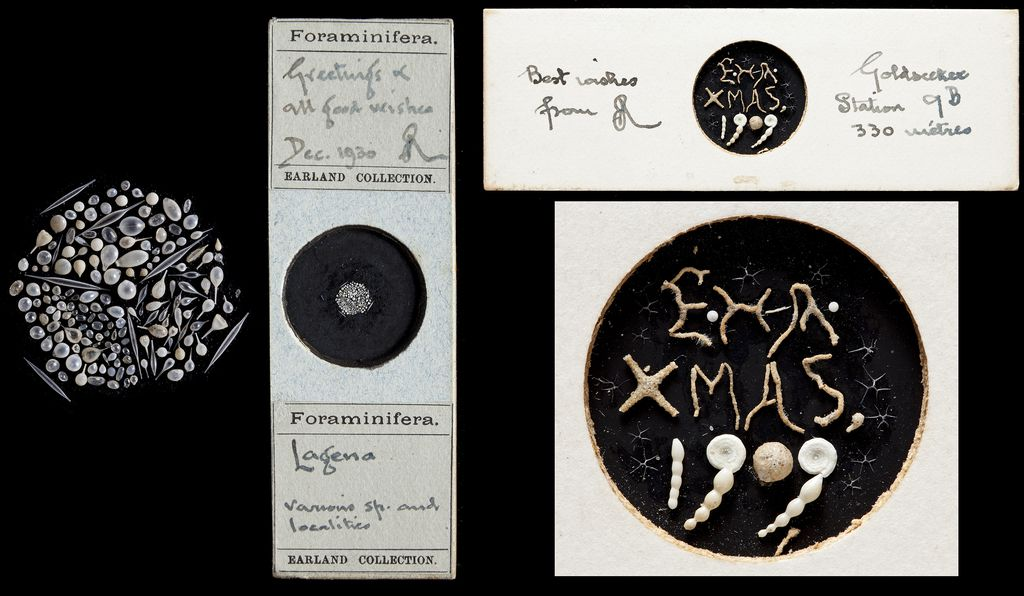 Microfossil Christmas card slides by Arthur Earland and Edward Heron-Allen from 1930 and 1909