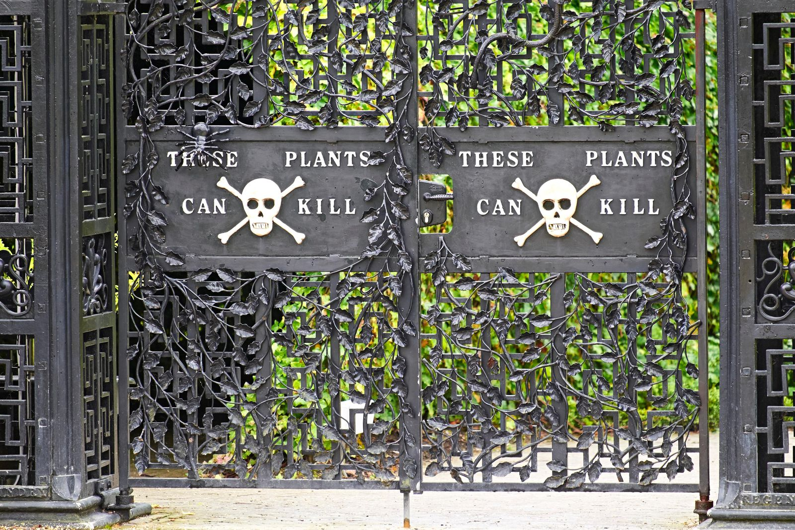 Step Inside The World S Most Dangerous Garden If You Dare Travel Smithsonian Magazine