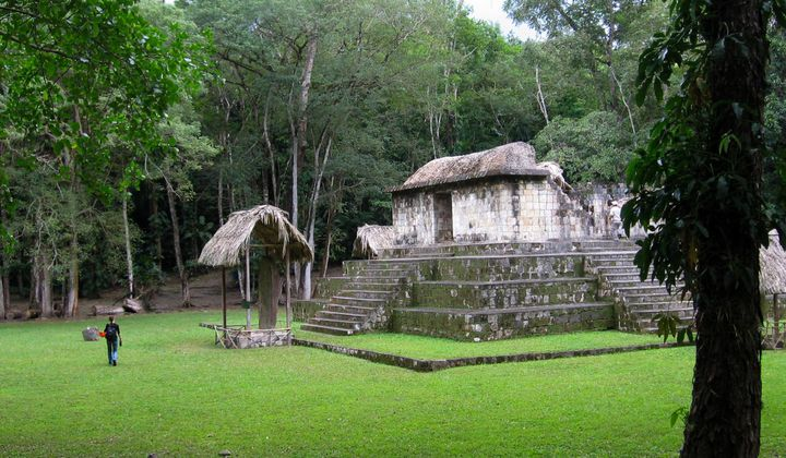 Dogs Were Moved 100 Miles for Ancient Maya Rituals
