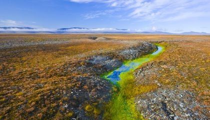 Microbiologists Keep Finding Giant Viruses in Melting Permafrost
