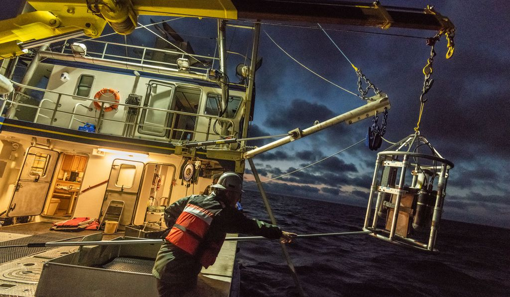Hansen Johnson of Dalhousie University deploys an optical plankton counter into the Gulf of Saint Lawrence. The device records plankton density and distribution, providing insights into the food source that draws whales to this area.