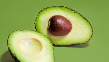 Holy Guacamole How The Hass Avocado Conquered The World Science Smithsonian Magazine
