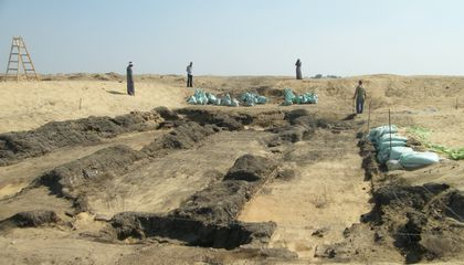 Researchers study burial sites like the Falcon Necropolis at Quesna to learn more about ancient Egyptian culture and biodiversity. The site is protected by the Egyptian Ministry of Tourism and Antiquities. (Joanne Rowland)